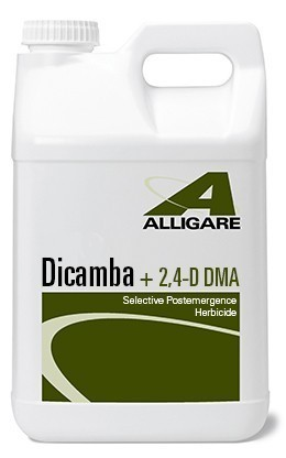 Dicamba + 2 4-D Herbicide