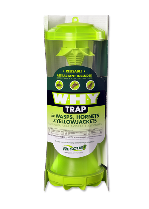Rescue! WHY Trap For Wasps, Hornets & Yellowjackets